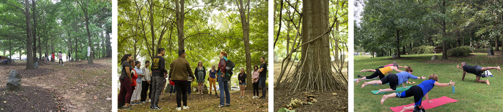 Above are four images of the Joseph Beuys Sculpture Park (JPSP). The first two images include groups of UMBC students in the park during autumn. The third picture shows part of an art installation--a single tree with fallen branches placed up against the base of its trunk. The fourth image shows a JBSP summer yoga class in progress.