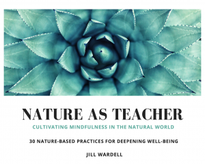 "An image of the cover of Jill Wardell's Nature as Teacher guide to ""30 Nature-Based Practices for Deepening Well-Being"""