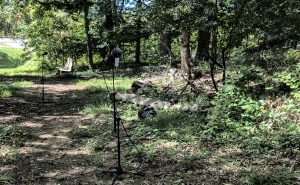 Photo of Stephen's microphones set up to record the cicadas in the Joseph Beuys Sculpture Park