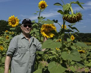 Photo of artist Stephen Bradley in a sunflower field in Maryland
