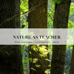 """An image of trees with green leaves. Text overlaid on the image reads, """"Nature as Teacher: Inner awareness , nonjudgment, peace"""
